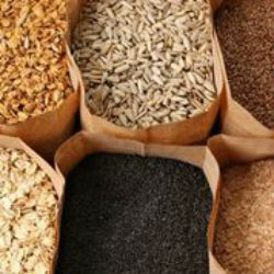 fiber fights hunger for weight loss